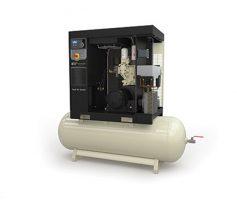 Винтовой маслозаполненный одноступенчатый компрессор R5.5i / R5.5i TAS